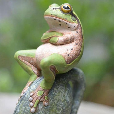 animals-as-humans-frog